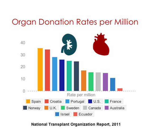 Should animal organs be farmed for human transplants?